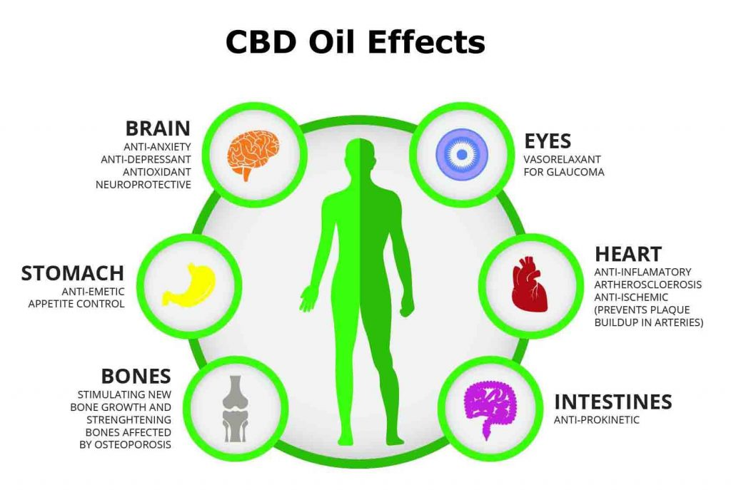 This image has an empty alt attribute; its file name is Cannabidiol-CBD-Oil-Benefits-Info-Guide-Types-Effects-1-1024x687.jpg